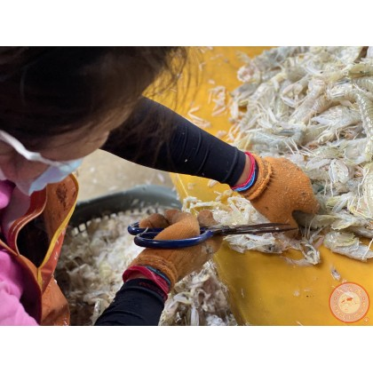 Mantis Shrimp Meat | Isi Udang Lipan| 虾姑肉 【450g+-/pack】