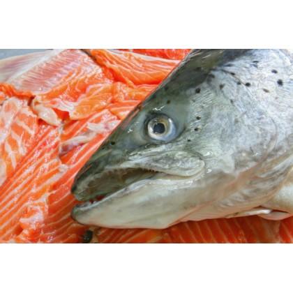 Salmon Head 三文鱼头 (Half 半边)